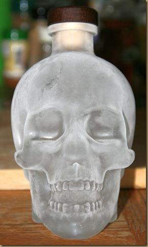 Crystal_Skull_Frozen_001